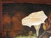 sacred-datura-detail-1