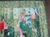 tulips-detail-2